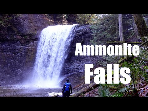 ammonite-falls-the-hard-way-